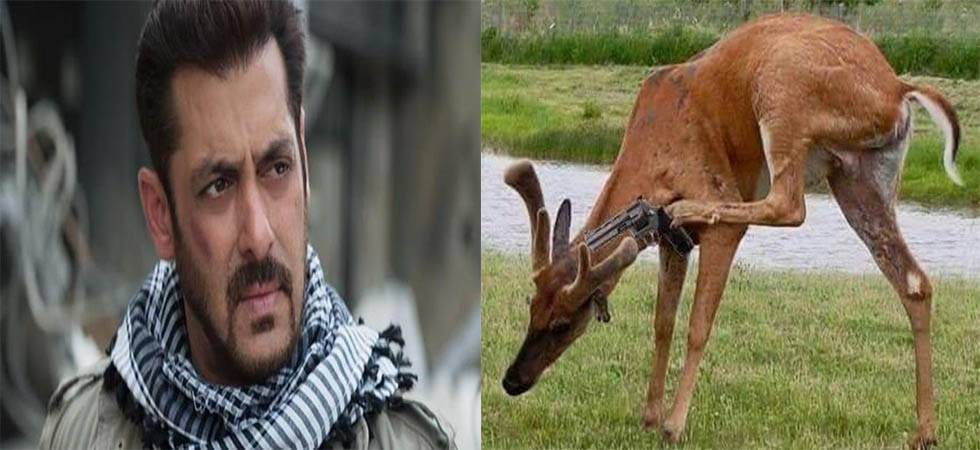 Blackbuck poaching case: After verdict, Salman Khan gets Twitter trolled