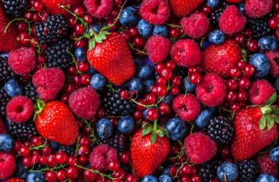 Berry pigments may help treat cancer