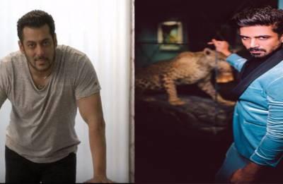 Salman Khan celebrates 'Race 3' co-star Saqib Saleem's birthday in style (see pics)