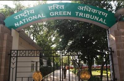 Green cover along highways: NGT issues notice to NHAI