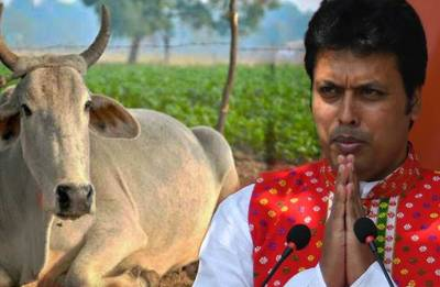 Why seek jobs, breed a cow and have Rs 10 lakh in bank balance: Tripura CM Biplab Deb