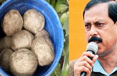 West Bengal election: Bombs found in backyard of TMC leader Arabul Islam
