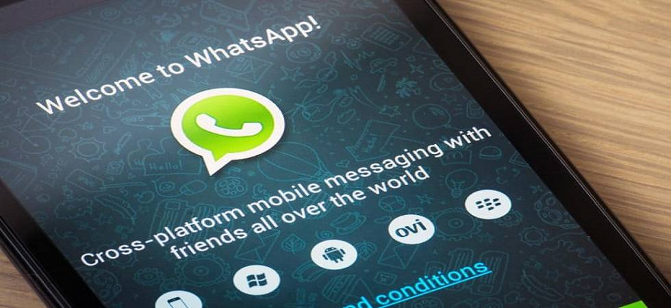 WhatsApp's Business app has garnered over three million active users (Source: PTI)