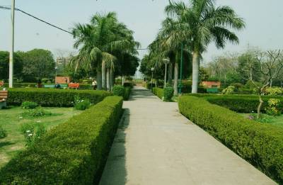 No more public functions in east Delhi park: NGT to civic bodies