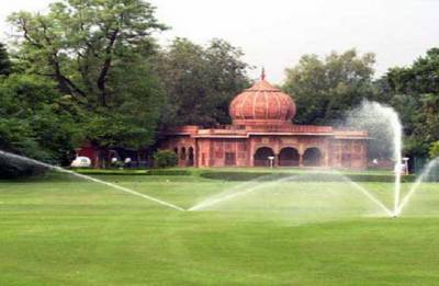 Over 800 logs of trees found buried at Delhi Golf Club: Forest department