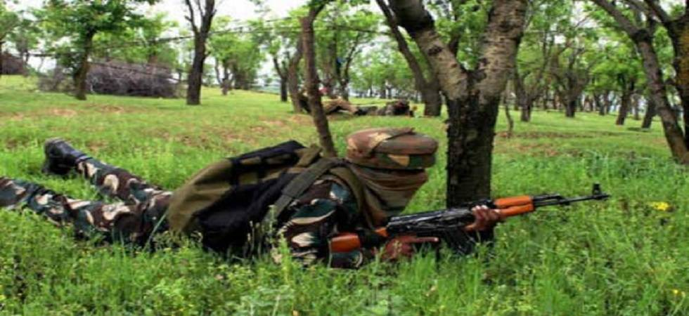 Jammu and Kashmir: Four terrorists killed in Baramulla encounter (Representational image)