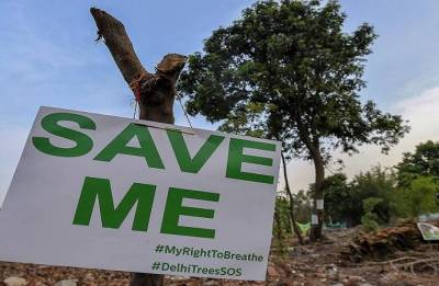 Save the Earth: Trees cut 'without permission' in Delhi's NCERT campus