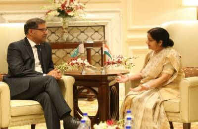 Hope India and Pakistan will be able to resolve all issues through dialogue: Syed Ali Zafar