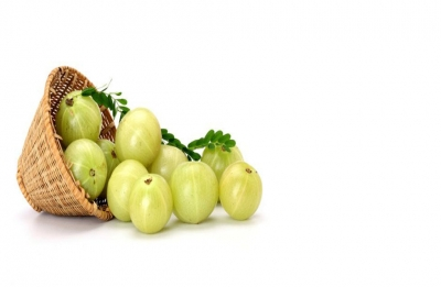 How the ancient amla therapy helps hair growth