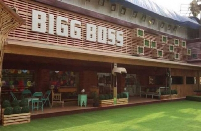 Bigg Boss 12: THIS Naagin star confirms being approached for Salman Khan's show