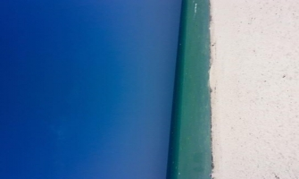 Door or beach? Different impressions are rounding social media with a baffling trend!