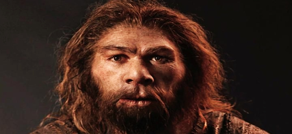 Climate change, Ice cold temperatures behind extinction of Neanderthals (Photo: Twitter)