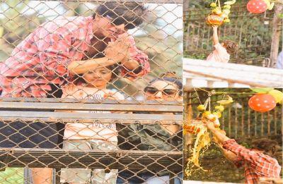 Shah Rukh Khan with paparazzi sweetheart AbRam celebrate Janmashtami