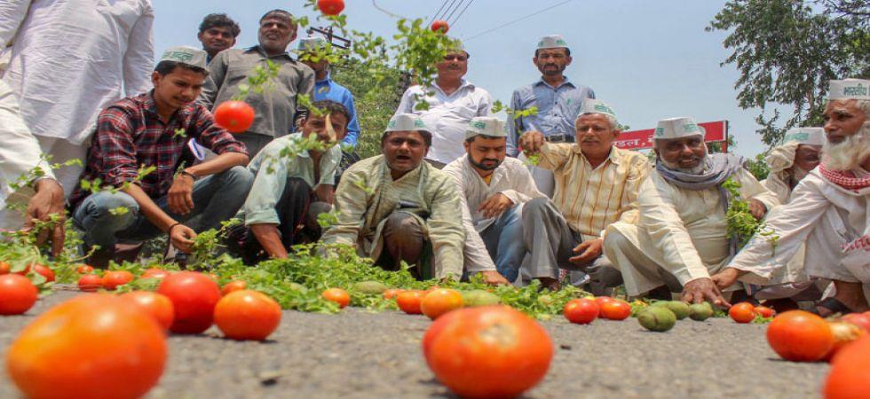 Over 5 lakh farmers take part at Majdoor Kisan Sangharsh Rally (Photo Source: PTI)