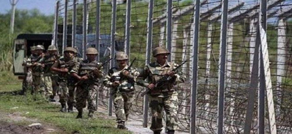 BSF hands over Pakistan intruder who crossed over inadvertently: officials (File Photo- PTI)