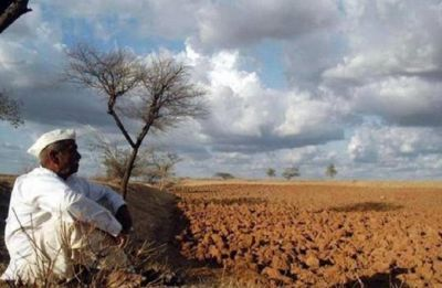 17 Maharashtra districts under threat of water scarcity: Officials