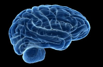 Scientists connect three human brains enabling them to share thoughts