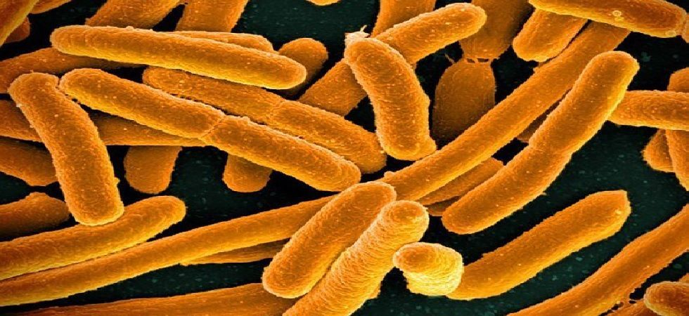 'Spacesuits' may protect microbes destined to live in space (Representational Image)