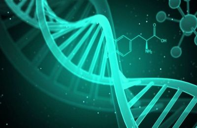 The gene variant behind Type 2 diabetes, low body weight risk