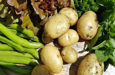 Potatoes can transform your body: Find out how