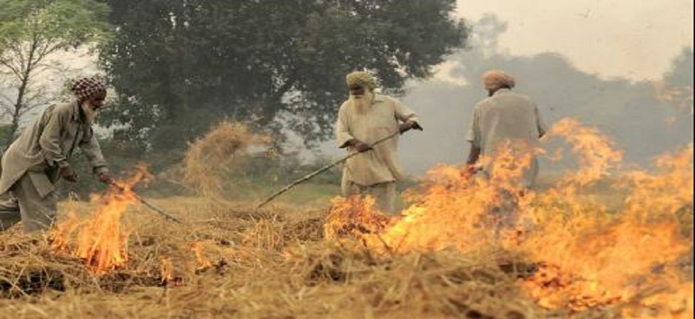 'It takes just a matchstick': Punjab farmers take the cheaper way out to deal with paddy stubble (Representational Image)