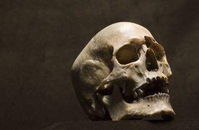 Delhi: Human skeleton found inside a tank in MCD school