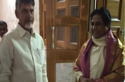 In Delhi, Chandrababu Naidu meets Mayawati, Yashwant Sinha, Arvind Kejriwal to build grand alliance for LS polls