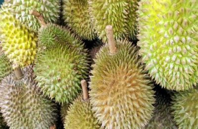 5 freaky facts about the world's smelliest fruit Durian