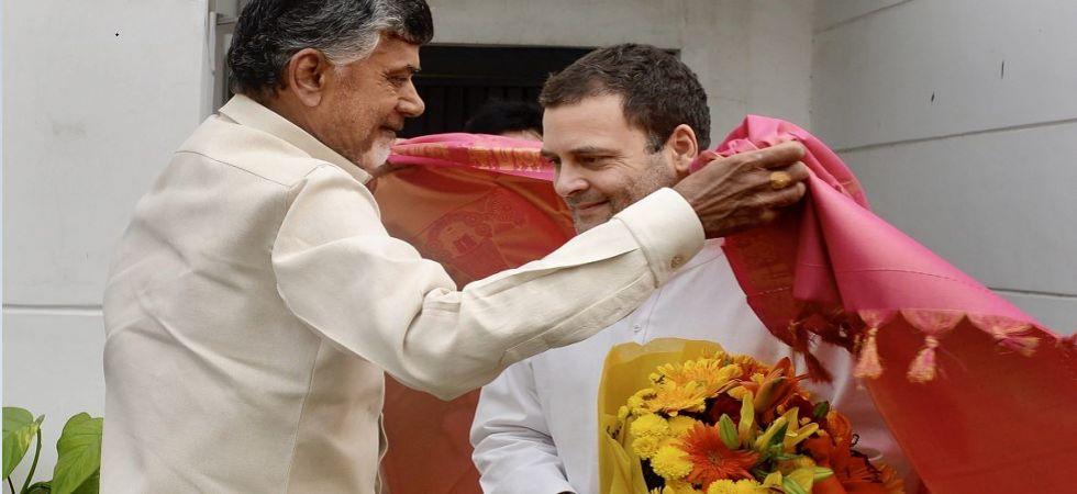 Naidu meets Rahul Gandhi; seeks opposition unity to save nation (File Photo)
