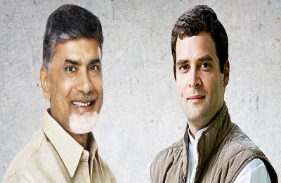 TDP chief Chandrababu Naidu in pan-India alliance talks with Rahul Gandhi, Pawar, Farooq