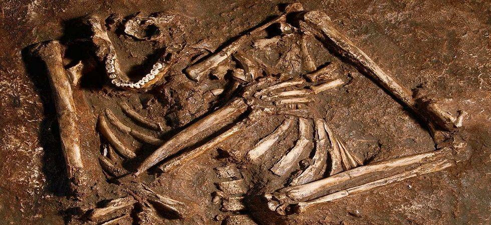 Neanderthals had straighter spine than modern humans: Study (Photo- Twitter)