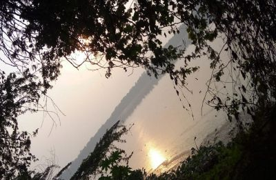 Okhla Bird Sanctuary - a peaceful getaway by the river Yamuna