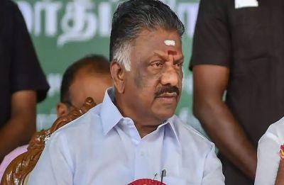 Tamil Nadu Deputy CM Panneerselvam's brother O Raja expelled from AIADMK
