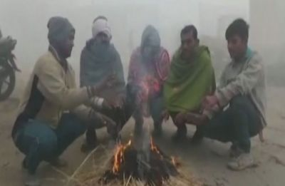 NN Weather: Bone-chilling cold grips Haryana, Punjab, mercury drops to zero in Karnal