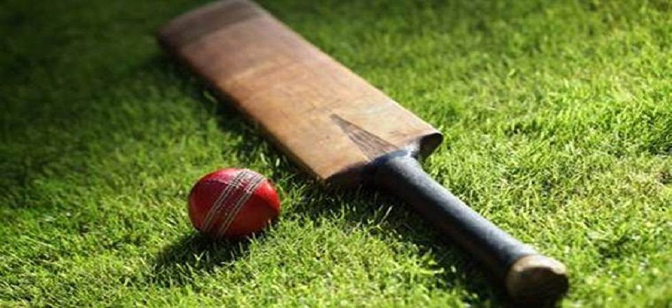 Assam beat Goa by 7 runs (Representational Image)