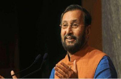 No suggestion to make Hindi mandatory till Class 8, says Education Minister Prakash Javadekar