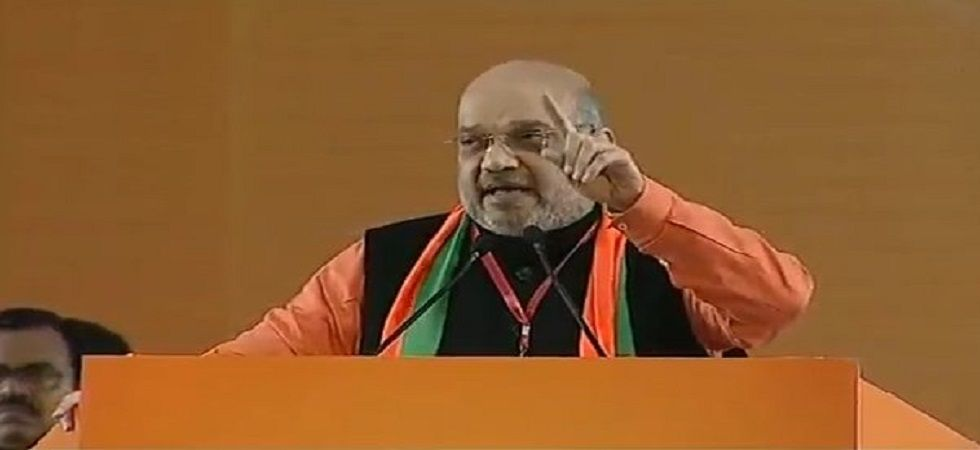 BJP president Amit Shah at Delhi's Ramlila Ground on Friday. (BJP)