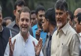Congress to go solo for Assembly, Lok Sabha Elections in Andhra Pradesh