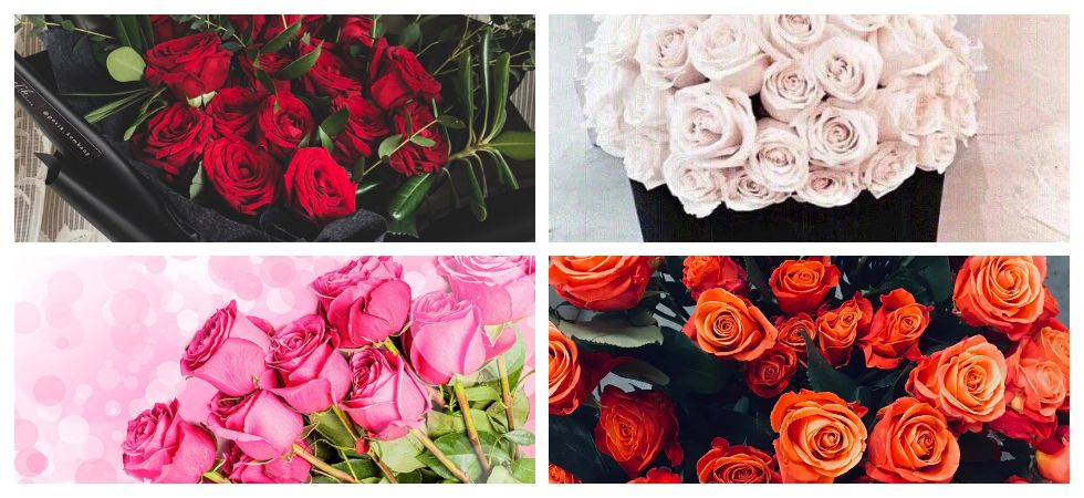Find out what different rose colour signify (Photo: File Photo)