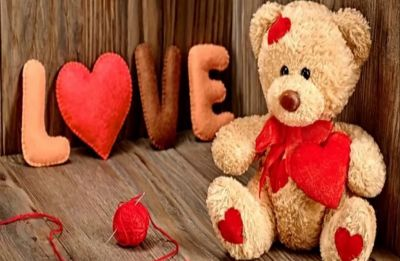 Teddy Day 2019: Gift a perfect teddy to your BAE this Valentine's Week
