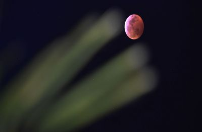Super Snow Moon - biggest and brightest Supermoon of 2019 to cross sky on February 19