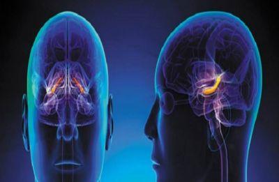 New MRI sensor to peer much deeper into brain