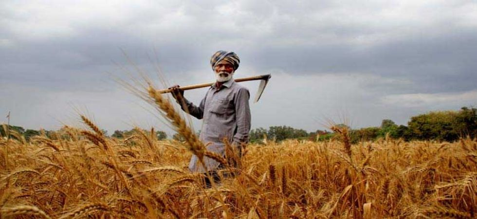 Another 1 crore farmers are expected to be covered in the next two to three days. (File photo)
