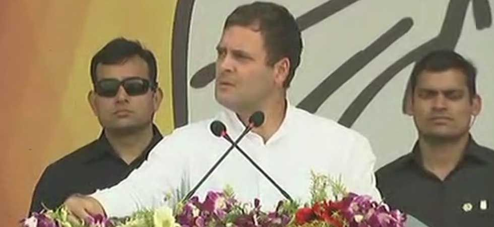 Congress president Rahul Gandhi. (ANI Photo)