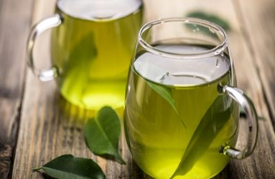 Pay attention! Green tea may cut obesity risk, other health disorders