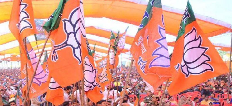 BJP announces 3 more LS candidates for Odisha (Representational Image)