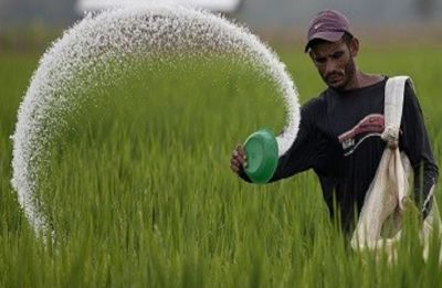 Government extends duration of New Urea Policy from April 1 till further orders