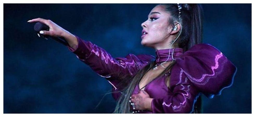 Ariana Grande hit with lemon during Coachella concert (Photo: Instagram)