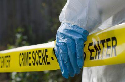 Ten elementary school students hit with BB or pellet gun in US state of Georgia