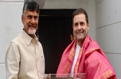 Naidu meets Rahul with grand post-poll alliance idea, oppn may choose PM face on May 21: Sources
